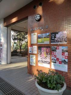 案内所の中には、公園に咲いている草花の資料などがいろいろあります