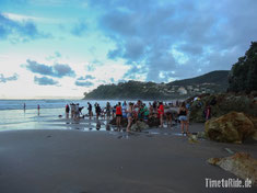 Neuseeland - Motorrad - Reise - traumhafte Motorradstrecken Coromandel Halbinsel - Hot Water Beach