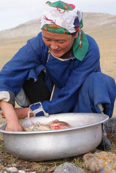 Femme mongole prépare de la viende