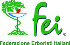 Logo della FEI