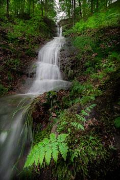 Wasserfall Eisenach Waterfall Thüringen Drachenschlucht