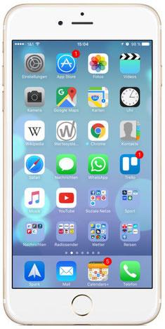 Wertesysteme.de App / Wertesysteme-App (Button auf Homescreen)