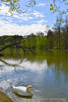 plan d'eau au bord de l'Isar