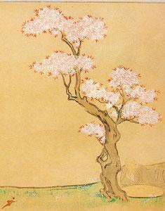 『西行物語絵巻』(渡辺家本)のなかの桜