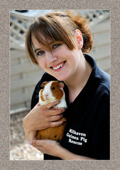 milhaven guinea pig rescue keighley