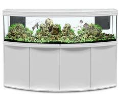 aquatlantis quality design and innovation aquarium wien benno david og. Black Bedroom Furniture Sets. Home Design Ideas