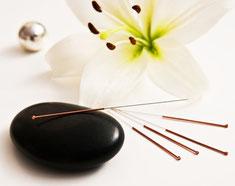 Darmsanierung  | Bioresonanz  | Akupunktur |  Naturheilkunde für Frauen | Faszientherapie  |  Osteopathie  |  Immunsystem