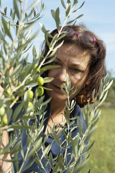 Katica Kaldenhoff bei der Olivenpflege