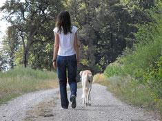 Frau mit Hund von hinten zu sehen beim gemeinsamen Spaziergang