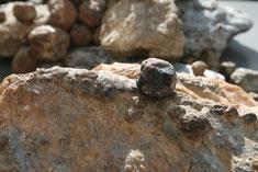 Granat, die Geheimwaffe der Alben