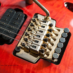 """licensed under Floyd Rose"" - Tremolo"