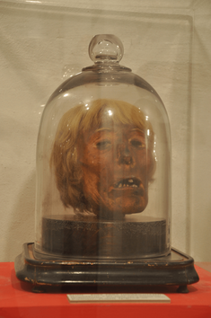 Mumifizierter Schädel von Franz Zahlheim*