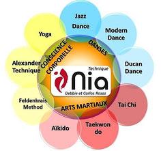 Qu'est-ce que le NIA?
