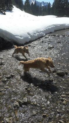Asta und Ajene Spaziergang zum Seebergsee