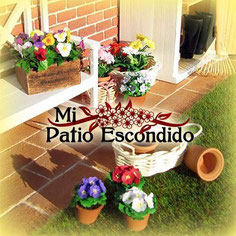 Mi Patio Escondido