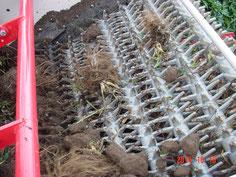 掘取り用、ハーベスタで振動デガー、土落し、収穫物搬送の3つの工程を 行っています。