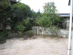 家の裏にある庭が結構広いです。きちんと植え込みを整備してあげると蘇りました。