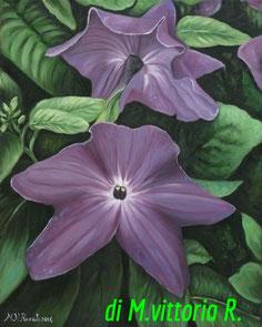 fiori Browallia Speciosa, olio su tela, cm 40x50 anno 2014- collezione privata