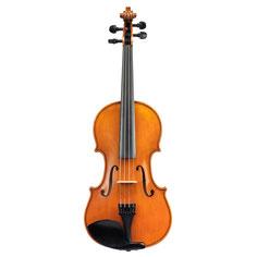 Violine Student Öllack