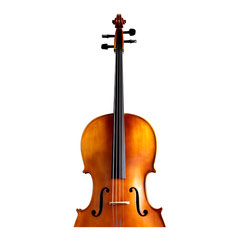 Celloset B mit Bogen Etui & Kolophonium