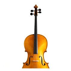 Violoncello Strad Form gelb