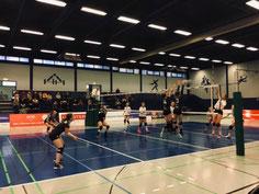 Konzentrierte Damen-2 beim Verbandsliga-Spitzenreiter
