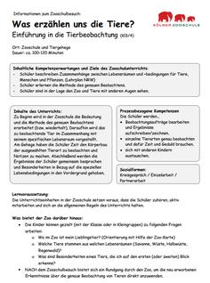Info-Flyer für Lehrer