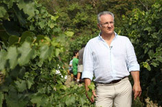 Carlo Nerozzi inspecteert zijn wijngaard