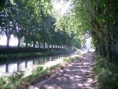 gite et canal de la robine à Narbonne