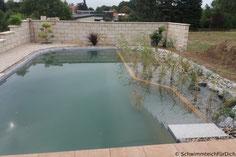 Selbstbausatz. Komplettpaket Schwimmteich Basis, Schwimmteich mit 3x7 m Schwimmzone und 2x7 m Filterbereich mit Kies befüllt, Filterbereich mit Teichpflanzen bestückt, Granittreppe zum Einlaufen in die Schwimmzone, Trennung der Zonen mit Holz unter Wasser