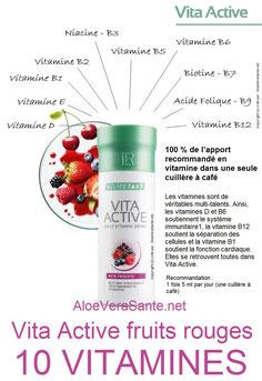 Vita Active : 10 vitamines,  rien qu'une cuillère à café couvre 100 % de vos besoins quotidien avec 10 vitamines importantes. Un concentré généreux de 21 fruits et légumes d'origine BIOlogique.  Aloe vera sante beaute