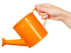 Bild einer orangen Gießkanne