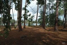 Casteljaloux, aire du lac de Clarens
