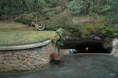CLIQUEZ pour voir le Site des grottes de Rouffignac