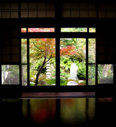 お座敷から見る庭園