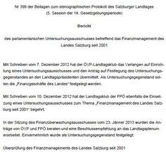 Stellungnahme der pol. Parteien- Protokoll