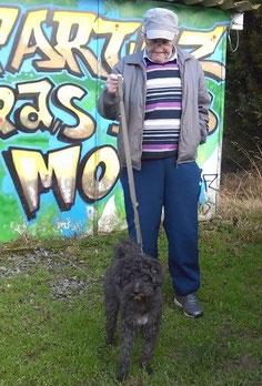 adoption chien de refuge - sauvetage chien - Bréhand - proche Lamballe - Bretagne