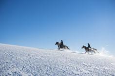 Winter, Reiten, Heimelsteiner, Wanderreithof