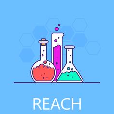REACH Enviropass