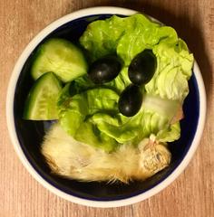 Eintagsküken, Salat, Gurke und Trauben