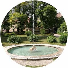 Kontakt Praxisgemeinschaft Vitalis, Horn, Niederösterreich
