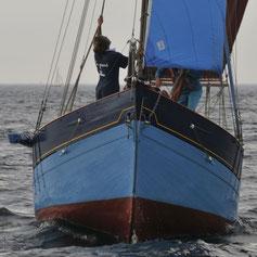 le grand bleu sur la vague 2