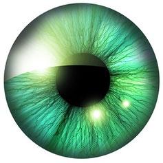 ocular Prothetic, Augenprothetik