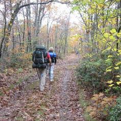 A peu: excursionisme, passejades i caminades