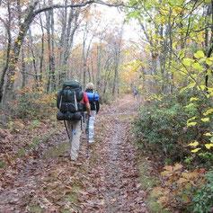 A peu: Excursions, passejades i caminades