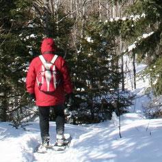 Neu, raquetes, snow, niège, snowboard