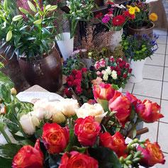 immer frishce Blumen in großer Auswahl im Blumenladen am Schloß