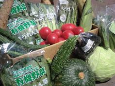 全国的に人気の有機・無農薬野菜セット