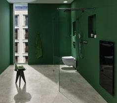 Badezimmer mit Dusche und WC komplett in dunkelgrün
