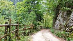 Karrenweg Brantenweg